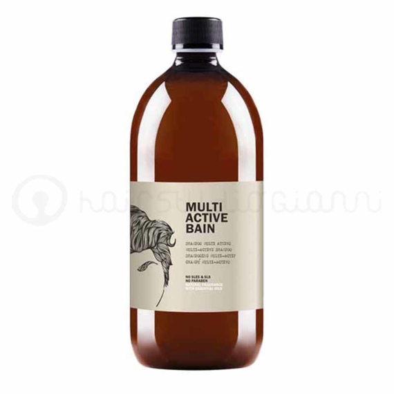 multiactive-bain-sh-1000ml